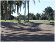 Palm Meadows2